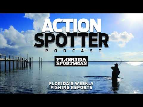 Episode 110: Mullet on the Move & Redfish Roundup   Action Spotter Podcast
