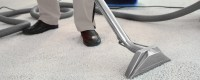 Find The Best Carpet Cleaning Companies