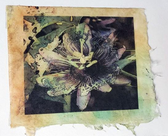 Cindy Bartosek imagery on fiber workshop