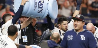D'Arnaud Homers in 9th to Lead Rays Past Yankees 4-3