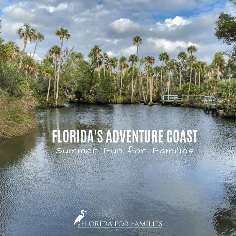 Best Things to Do for Families on Florida's Adventure Coast