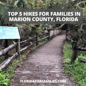 Best hikes for families in Marion County, Florida
