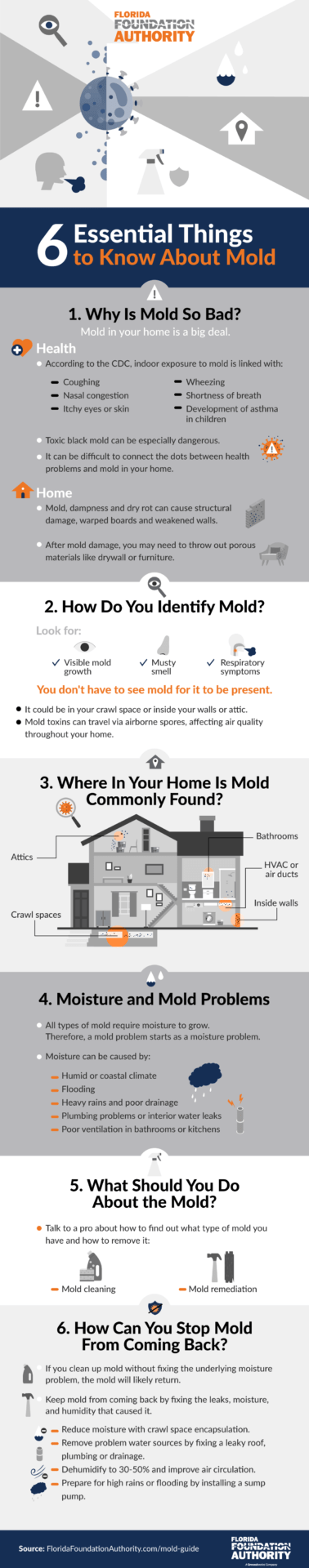 Mold Guide