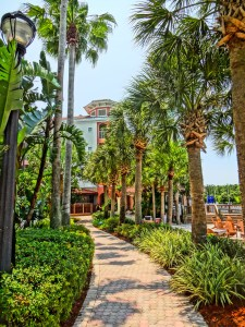 Palm-tree-lined Walkway at Marriott's Orlando Resort