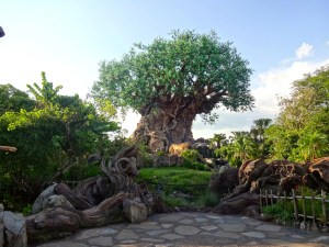 Animal Kingdom's Tree of Life - Daytime