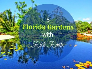 5 Florida Botanical Gardens with Rich Roots!