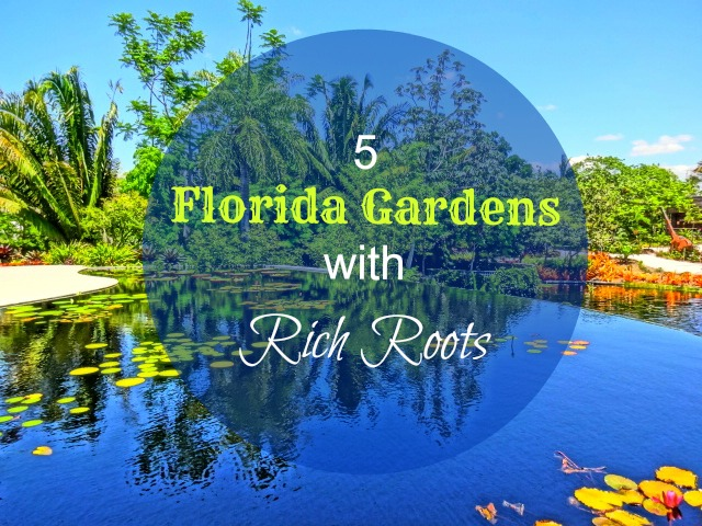Explore 5 Florida Botanical Gardens With Filthy Rich Roots!