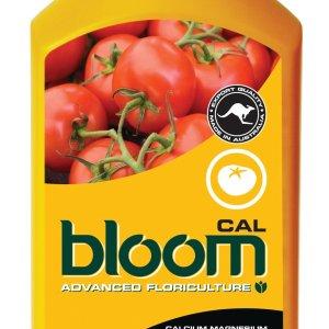 Bloom Cal 1L