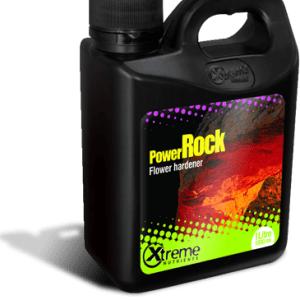Power Rock 16 oz