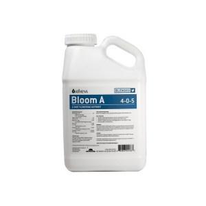 Bloom A 1 Gallon