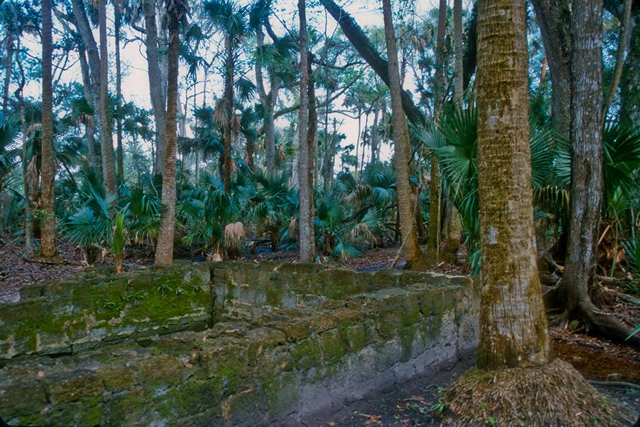 Bulow Plantation Ruins State Park  Florida Hikes