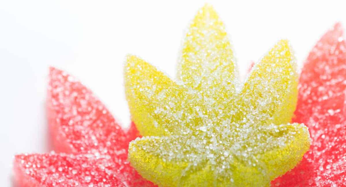 Take Your Gummies 5 Reasons to Try CBD Gummies