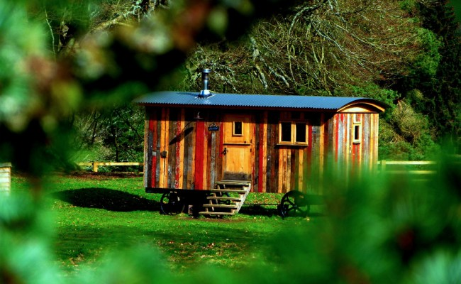 Lawmakers Pushing For Florida To Adopt Tiny Homes
