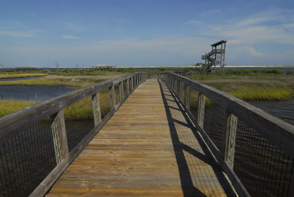 Observation Tower at Big Lagoon State Park