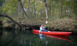 Kayaking the Ichetucknee River