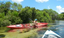Trip Report: Kayaking Juniper Springs Run