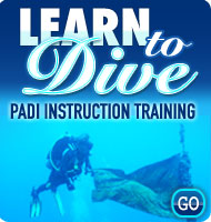 Learn To Dive PADI Instruction Training