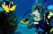 snorkel-dive2