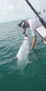 The author with an estimated 75-pound tarpon in Islamorada