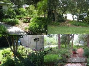 Wildlife Corridors in you yard.