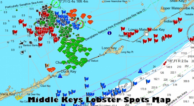 Florida keys spiny lobster spiny crawfish fishing guide for Best fishing spots in the keys