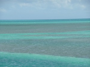 Florida Keys Water Colors