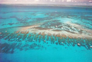 Looe Key Reef Florida Keys Names