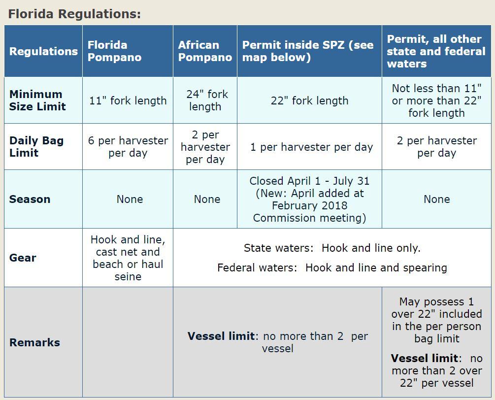Permit Pompano Regulations Permit Spawning