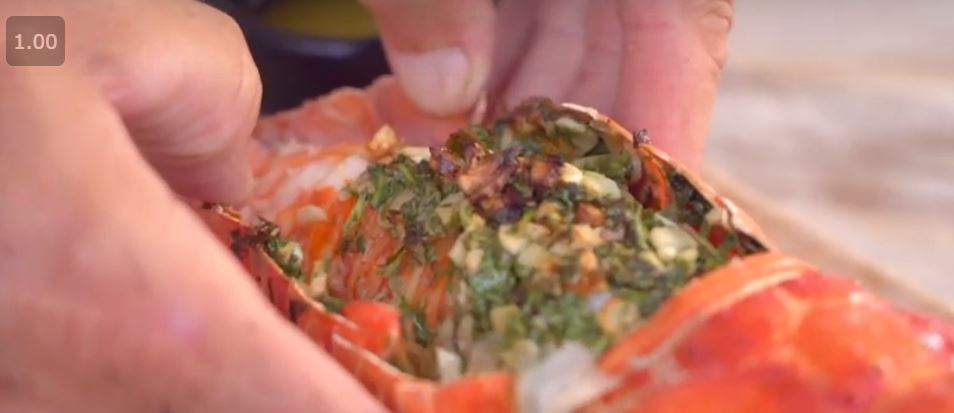 Taste the Florida Keys Lobster – Video