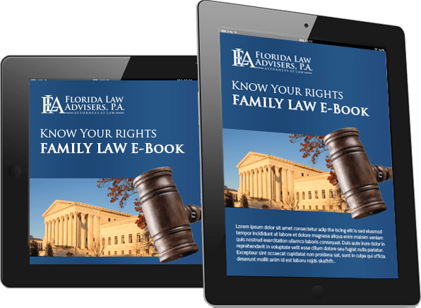 Tampa Divorce & Family Law E-Book