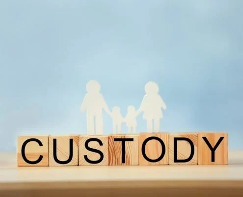 Child Custody Guide: Florida Family Law