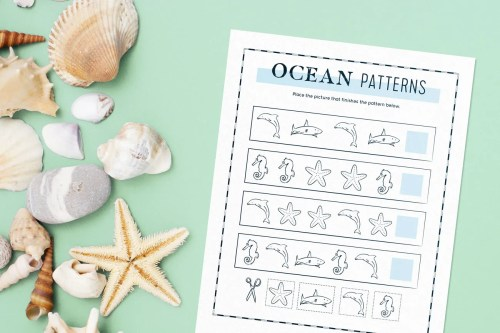 small resolution of 10 Educational Ocean Activities for Kids - FloridaPanhandle.com
