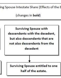 Surviving spouse   intestate share is half of the estate lineal descendants decedent would inherit remaining under also effective october  rh flprobatelitigation