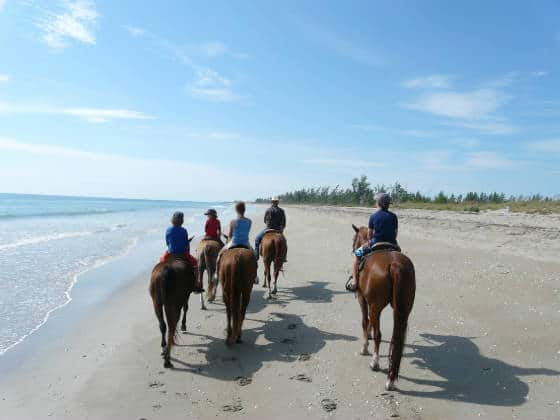 Horseback riding on Frederick Douglas Memorial Park on Hutchinson Island