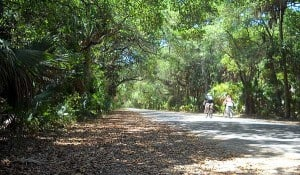 The main road into Washington Oaks Gardens State Park in Palm Coast is the original two-lane A1A.