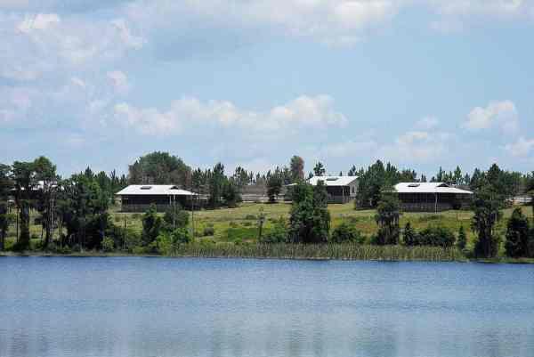 The cabins at Lake Louisa State Park