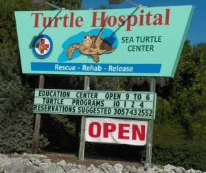 Sign beckons to the Turtle Hospital, Marathon, Florida.
