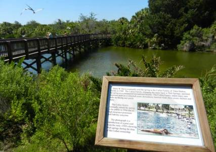 Spring in park along the Pinellas Trail