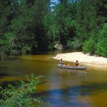 Paddlers at Florida's Blackwater River State Park
