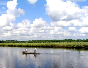 Canoeing on the Tomoka River at Tomoka River State Park