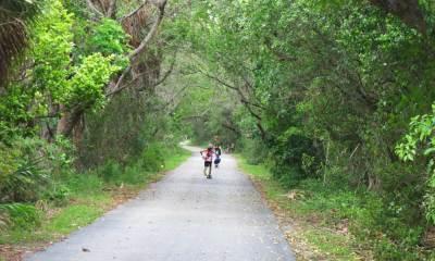 Cape Florida State Park on Key Biscayne