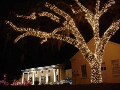 Festival of Lights at Stephen Foster Folk Culture Center State Park (Photo by Florida Department of Environmental Protection)