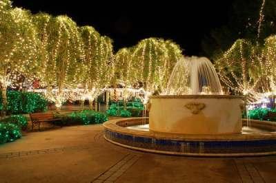 Holiday lights in Mount Dora.