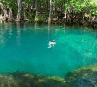 manatee springs photo by donna brown