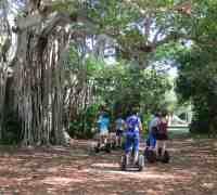 Hugh Taylor Birch State Park in Fort Lauderdale. (Photo: Bonnie Gross)