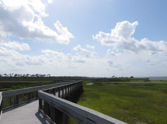 Bald Point State Park is a worthwhile side-trip because of the beautiful scenery. (Photo: Bonnie Gross)