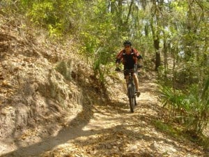 Bike trails are challenging and well-maintained at Alafia River State Park