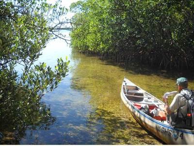 Mound Key Archaeological State Park kayak landing