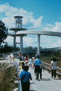 Observation tower at Shark Valley, Everglades National Park