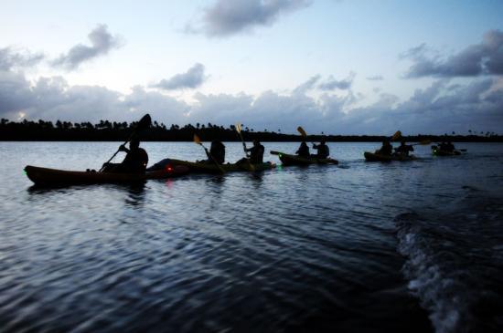 bio-kayaking